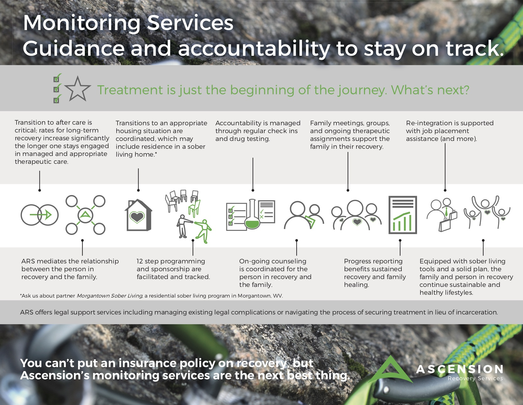 ARS-Monitoring-Infographic